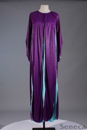 Photo of Purple Garment
